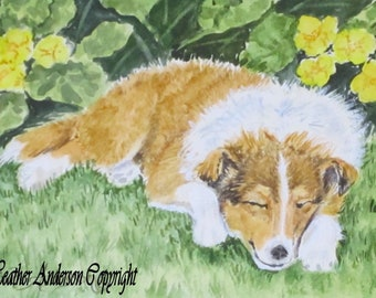 "Rough Collie sable Pup, ""Primrose Pup"",  original 4 x 6 painting,  watercolor, Heather Anderson dog artist"