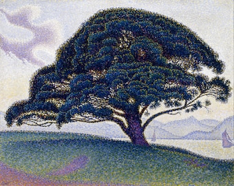 The Bonaventure Pine by Paul Signac, in various sizes, Giclee Canvas Print