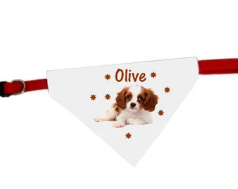 King charles cavalier dog bandana collar personalized with name