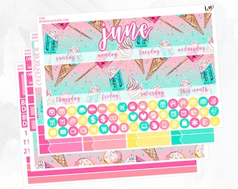 June Monthly Kit | Matte Glossy Planner Stickers