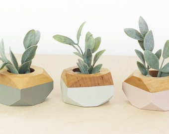 Geometric Wooden Mini Planters set of 3, for succulents, Desk and Home Decor, blush