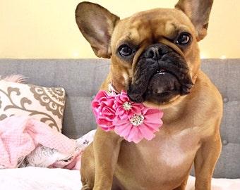 Dog accessories, Dog collar flower, Dog flower, Pet accessories, Girl dog, Dog collar accessory, Dog collar bow, Dog bow, flower for dog