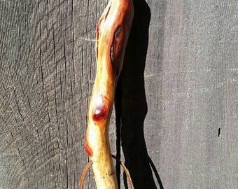 Manzanita Tree Walking Stick/Compass Hiking Trail Stick