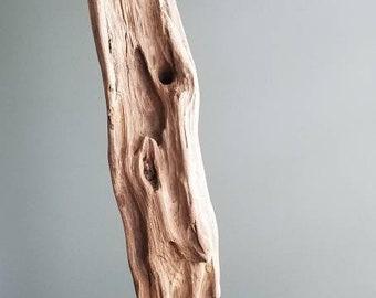 """Driftwood Sculpture """"Longevity"""""""