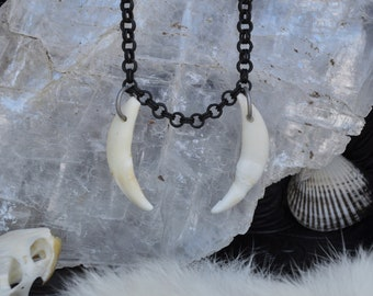 Fangs Necklace - Coyote Canines