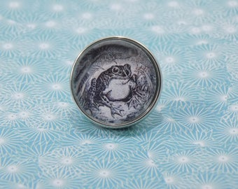 Snap Charm Button - Vintage Frog - Meme Jewelry, Dank Memes, Vintage, Noosa, Ginger Snaps, Vintage Illustrations, Memes Antique
