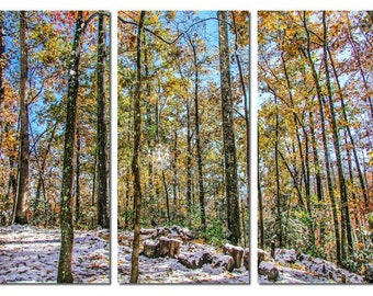 Autumn Forest Winter Wonderland in Forest Canvas Triptych, 3 Panel Art, LARGE, Ready to Hang