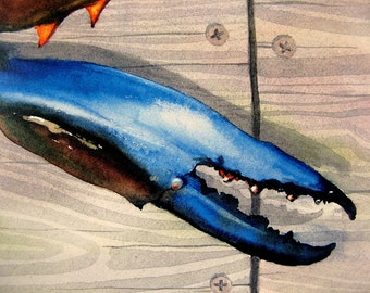 Blue Crab Claw Maryland Delaware Watercolor Art of the Bay Print by Barry Singer 8X10