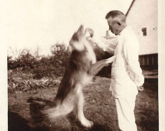 "Vintage Snapshot ""Dog Tricks"" Collie Dog Jumps Up For Treat Blurry Motion Found Vernacular Photo"