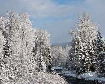 Montana Winter, Northfork Creek, Winter Wonderland, Perfect Christmas Image, Photograph or Greeting card