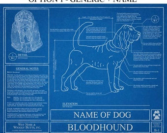 Personalized Bloodhound Blueprint / Bloodhound Art / Bloodhound Wall Art /  Bloodhound Gift / Bloodhound Print