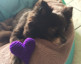 Crocheted Heart Dog Toy Squeaker
