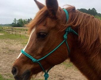 Rope Halter Aqua (horse or pony sizes) Black noseband optional
