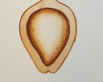 ANTONIO TOCORNAL #373 Heart Organ Acorn Womb Abstract Nut Seed Plant Brown Sepia Vintage Watercolor Painting Artist Signed Eclectic Art