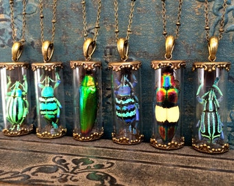 Terrarium necklace Real beetle necklace Wiccan jewelry Taxidermy Glass terrarium jewelry Pressed flower necklace Real insect necklace
