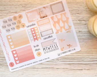 Peachy Bees Mini Happy Planner Kit; Weekly Kit; TN Kit; Planner Stickers; Bullet Journal; Mambi; Mini Kit; Bee Stickers; Spring Weekly Kit