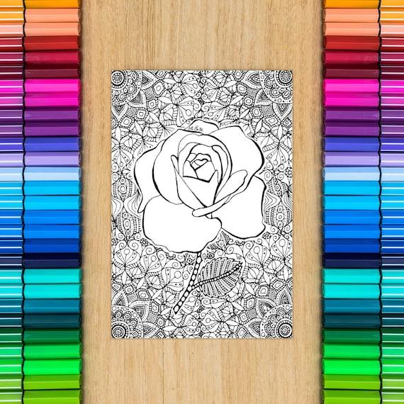 ROSE FLOWER card - colori...