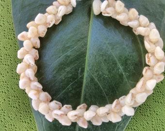 Shell Bracelet - Kauai Shell Bracelet - Hawaiian Shell Jewelry- Traditional Hawaiian Heleconia Sea Shell Bracelet- Rare Hawaii Jewelry