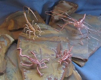 Copper Cricket, Scorpion, Dragonfly or lizard