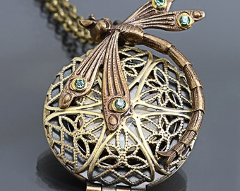 Compass Necklace Dragonfly Necklace Steampunk Necklace Working Compass Locket