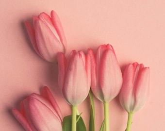 Pink Tulip Wall Art - Flower Photograph - Bouquet - Romantic Art - Love - Cottage Chic Wall Art - Modern Minimalist Art - Dreamy Floral Art