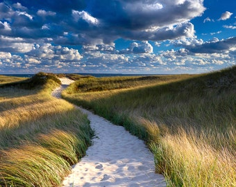 Large Beach Photography, Marthas Vineyard Dunes Path Photo, Coastal Wall Print, Cape Cod Beach Artwork, Nautical Wall Decor Blue Green Beige