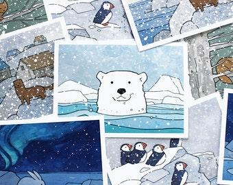 Mixed Christmas Card Set No. 2 - 10 Illustrated animal cards