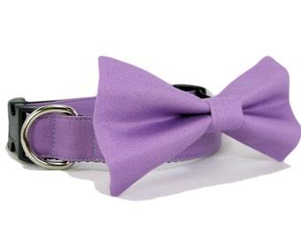 Wedding dog collar-Purple Dog Collar with bow tie set  (Mini,X-Small,Small,Medium ,Large or X-Large Size)- Adjustable