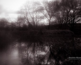 April Afternoon | Photography | Limited edition