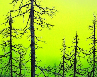 RW2 Signed Limited Edition Print Acid Rain Forest Art Surrealism