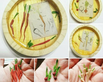 Vegetable Miniatures with Diagrams - Fridge Magnets: Carrots, Parsnips, Radishes