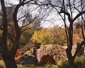 Wall art - Central Park - Photography - Gift -  Print - Poster -  Photograph - Photo - Bridge - Fall