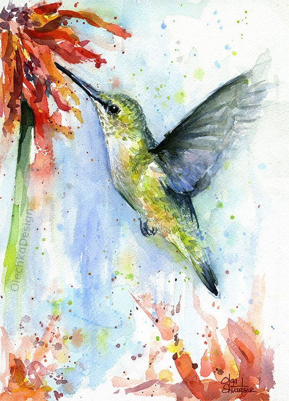 Hummingbird Watercolor Red Flower Art Print Bird Painting