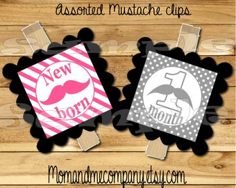 Baby girl First year photo clip banner Pink Grey mustache first birthday 12 month banner first year banner Mustache party RIBBON INCLUDED