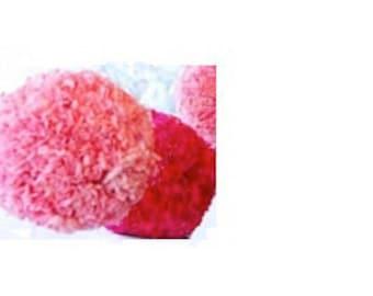 Carnation Kissing Ball