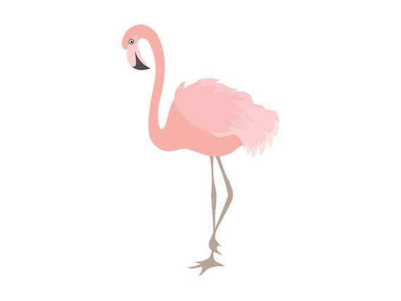 flamingo clipart digital flamingo bird exotic coral rh etsy com flamingo clip art free flamingo clip art images
