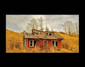 Alaska - Print, Abandoned house with a of couple eagles watching from the trees - Ninilchik, Alaska