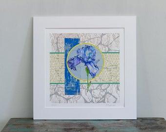 Iris, Giclee Print