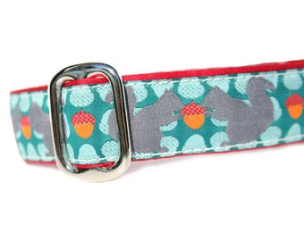 """1"""" Dog Collar Squirrelly - Choose Your Collar Style!"""