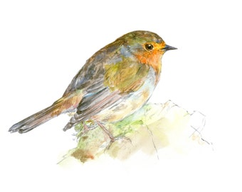 Robin watercolor painting - bird watercolor painting - 5x7 inch print - 0103