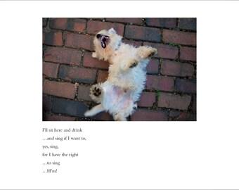 Westie Dog Card - Blank Inside - Birthday Card - Congratulations Card - Dostoyevsky Greeting Card