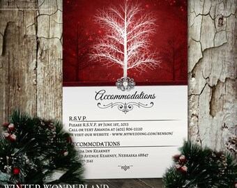 Winter Wonderland Accommodations Card, Wedding Insert Card, Digital Printable Insert Card, Winter Wedding, Holiday, December, Snowflakes