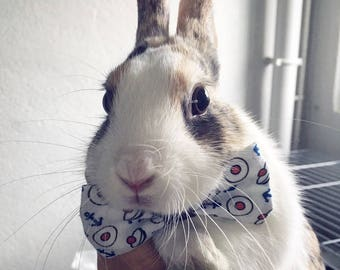 Bow tie for rabbit - fabric choice