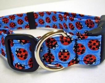 Doodlebug Dud's Blue Ladybug Collar