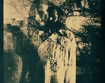 Mariano's Dream Original Tannic Acid Treated Cyanotype Photograph