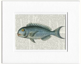 blue fish dictionary page print