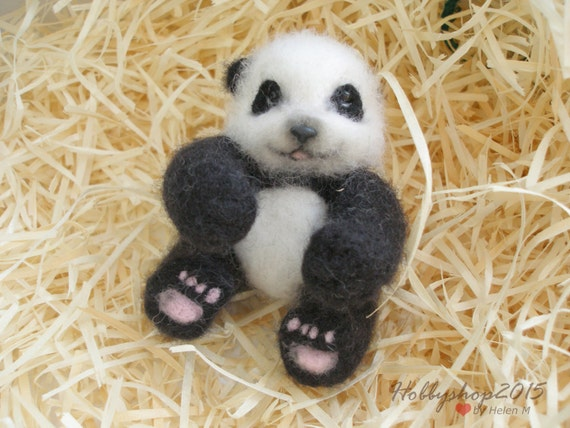 pandabär baby