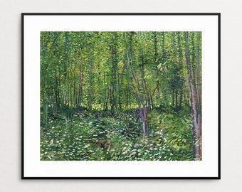 Vincent Van Gogh - Tree and Undergrowth - Van Gogh Print - Van Gogh Wall Art - Van Gogh Forest - Van Gogh Landscape- Impressionism