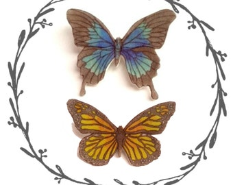 Butterfly Illustrated Brooch
