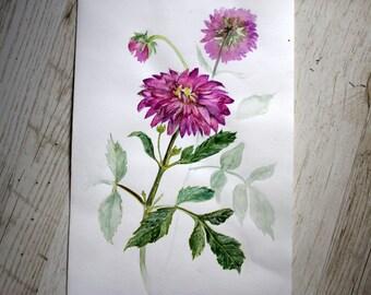 Original dahlia flower watercolor painting Floral Watercolor Painting Botanical illustration Pink dahlia Home decor painting Art wall paint